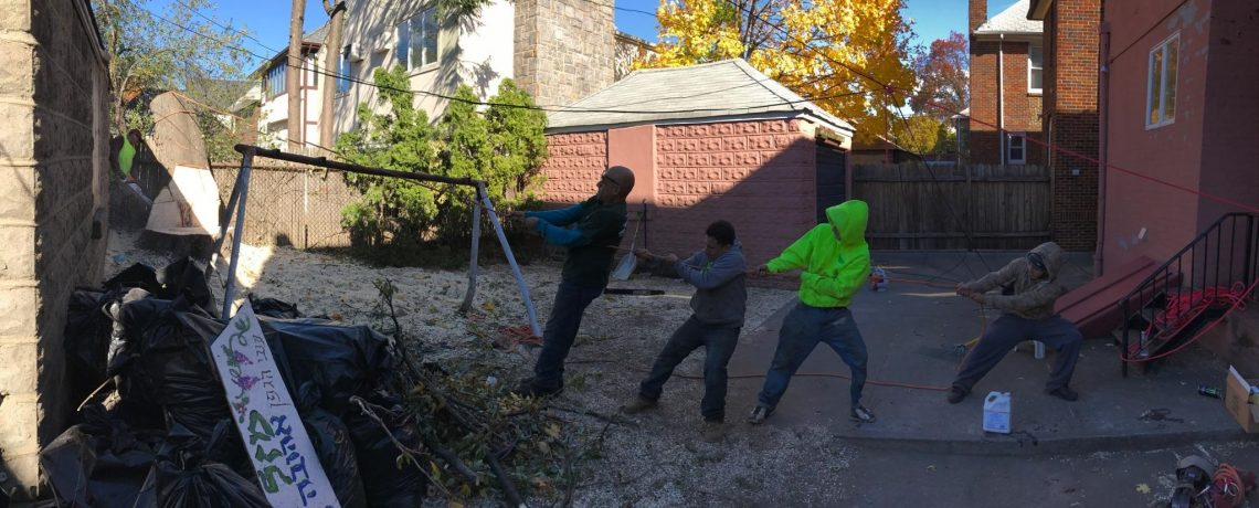 Tree Removal Staten Island